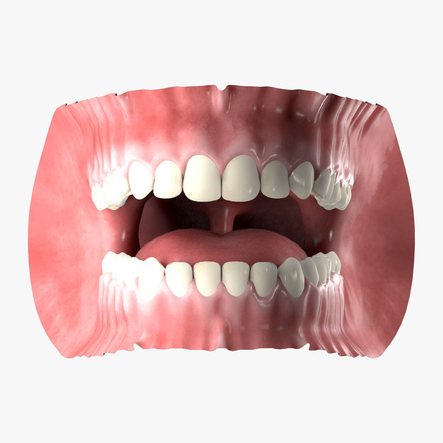 Human Mouth royalty-free 3d model - Preview no. 1