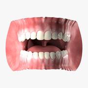 인간의 입 3d model