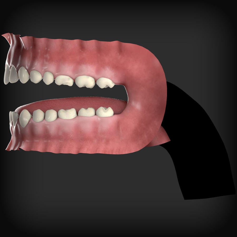 Human Mouth royalty-free 3d model - Preview no. 5