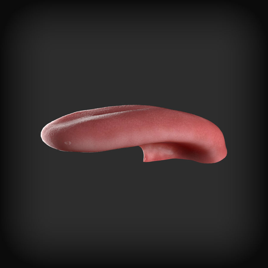 Human Mouth royalty-free 3d model - Preview no. 6