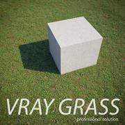 Vray Grass 3d model