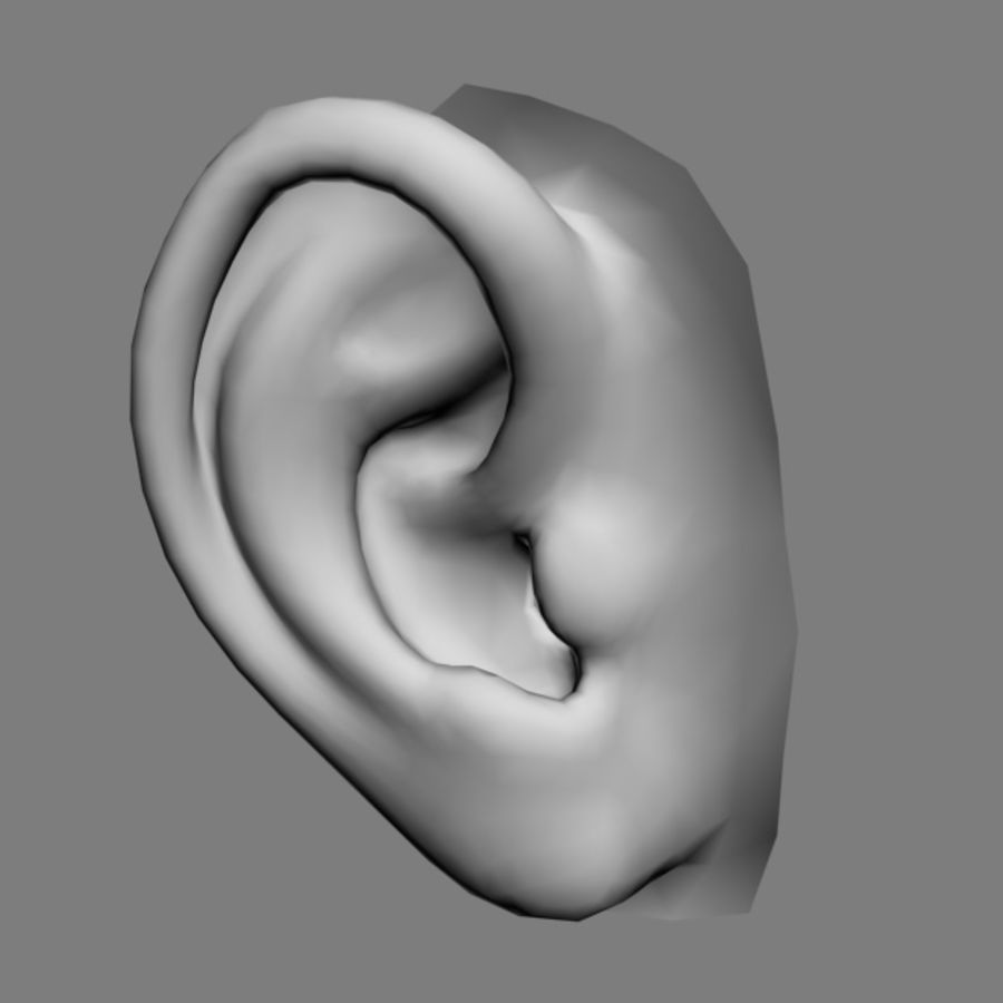 耳朵V3 royalty-free 3d model - Preview no. 4