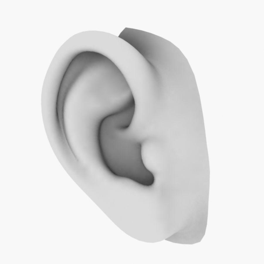 耳朵V3 royalty-free 3d model - Preview no. 3