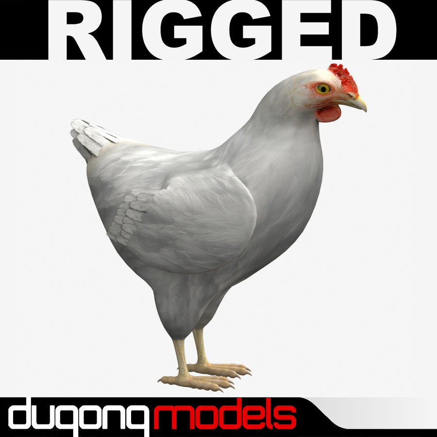 Chicken royalty-free 3d model - Preview no. 1