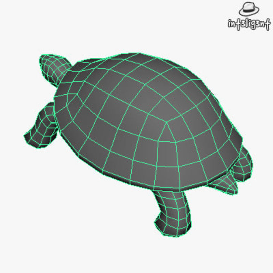 Low Poly Turtle royalty-free 3d model - Preview no. 6