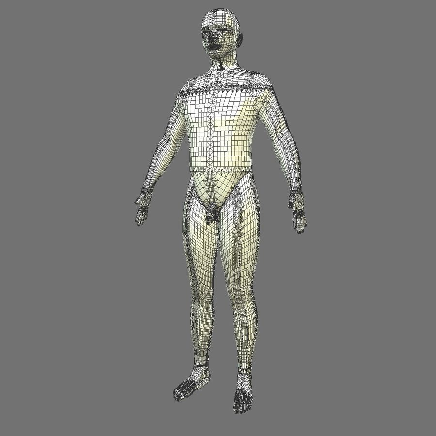 Corpo respiratorio e maschile royalty-free 3d model - Preview no. 19