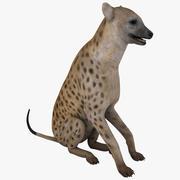 Hyena Pose 3 3d model