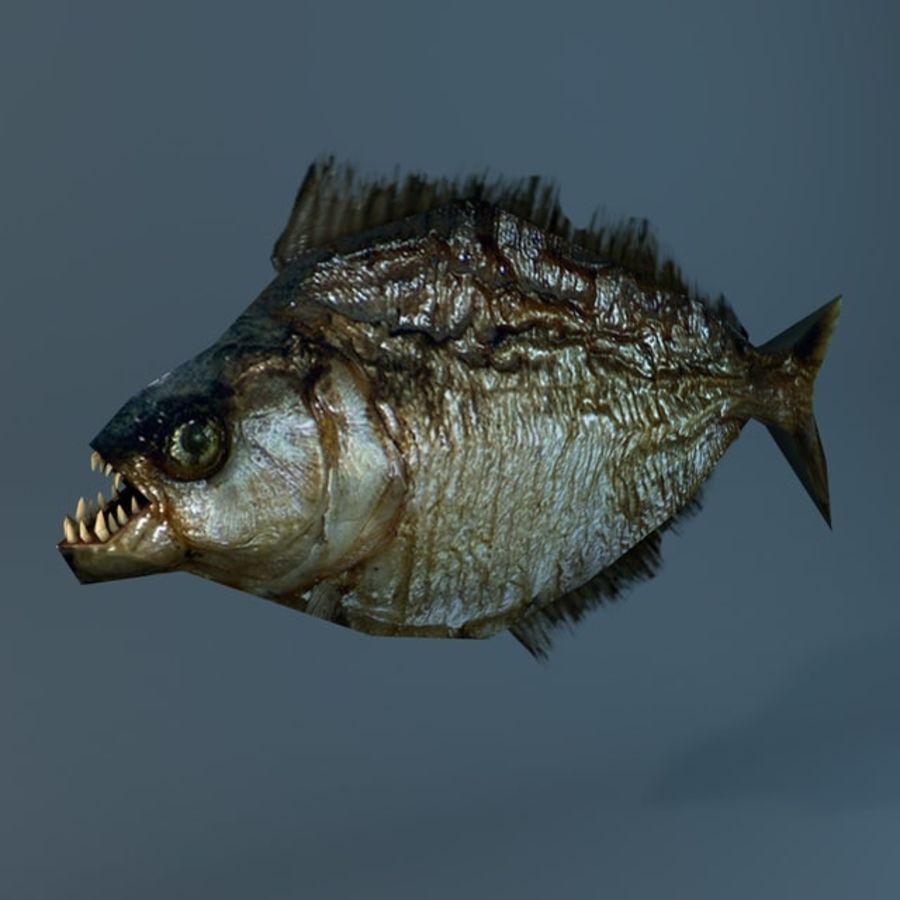 Low poly piranha royalty-free 3d model - Preview no. 2