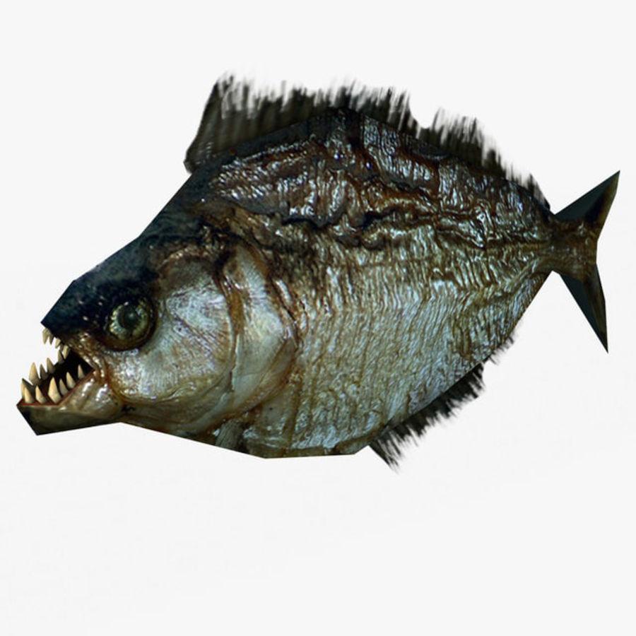 Low poly piranha royalty-free 3d model - Preview no. 1