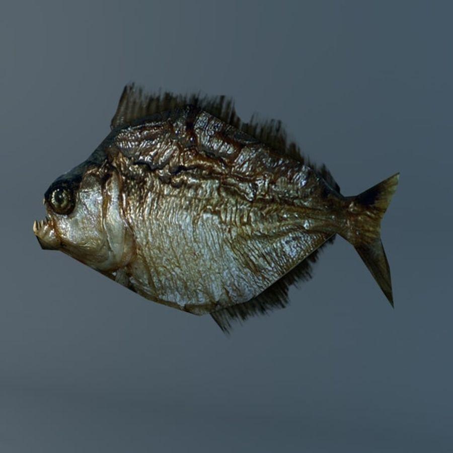 Low poly piranha royalty-free 3d model - Preview no. 3