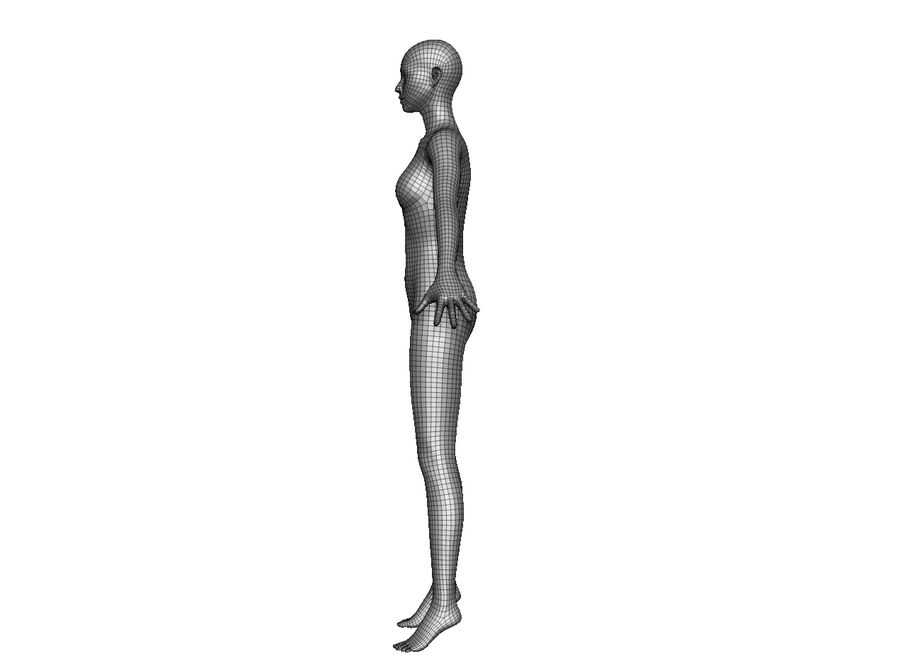 Modèle de base féminin royalty-free 3d model - Preview no. 3