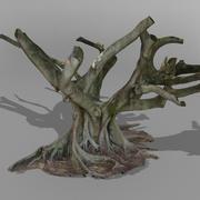 Фиговое дерево австралийский 3D SCAN 3d model
