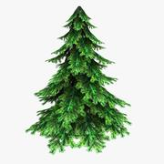 Spruce(Low Poly) 3d model