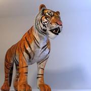 Tiger (mray) 3d model