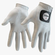 Titleist - Gants de golf 3d model