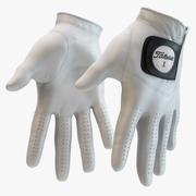 Titleist - Golf Gloves 3d model