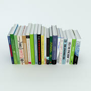 Row of books 3d model