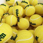 Теннисный мяч 3d model