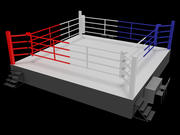 Boxing Ring 3d model