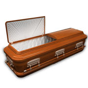 High Def Classic Coffin Wood Modern 3d model