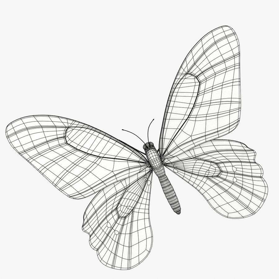 La farfalla royalty-free 3d model - Preview no. 7