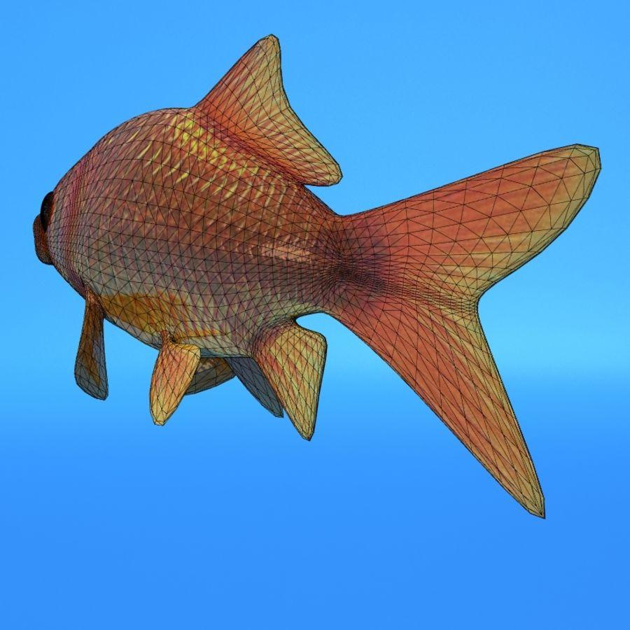 Akvaryum balığı royalty-free 3d model - Preview no. 8