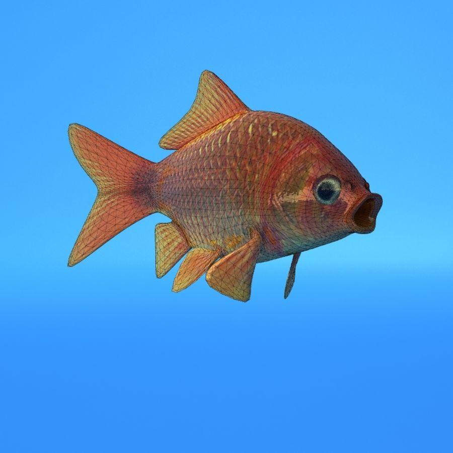 Akvaryum balığı royalty-free 3d model - Preview no. 6