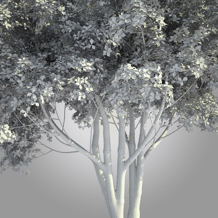 Árbol alto realista 001 royalty-free modelo 3d - Preview no. 5