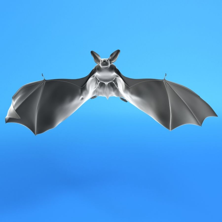Flittermouse, Fledermaus royalty-free 3d model - Preview no. 1