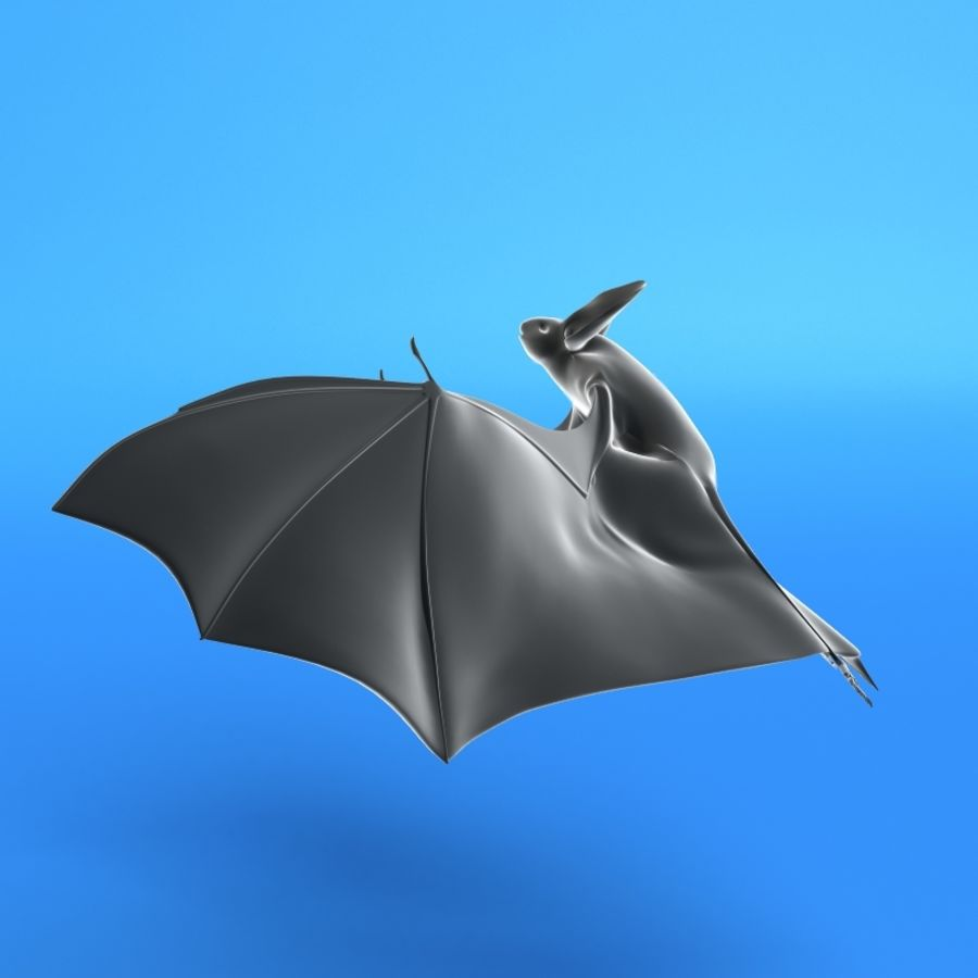 Flittermouse, Fledermaus royalty-free 3d model - Preview no. 5