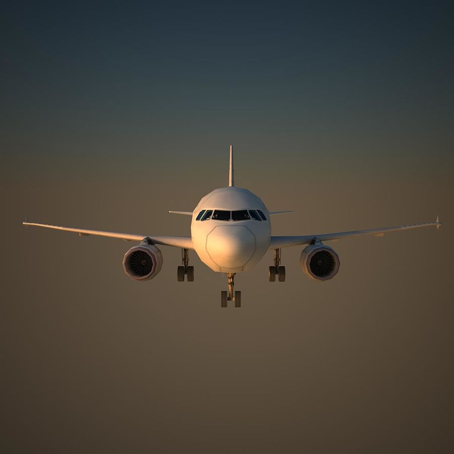 A319 VIP royalty-free 3d model - Preview no. 2