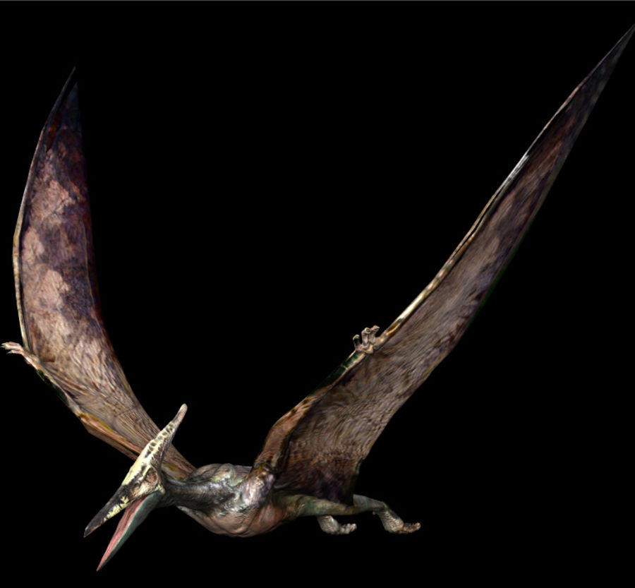 Jurassic Park - Pteranodon royalty-free 3d model - Preview no. 6