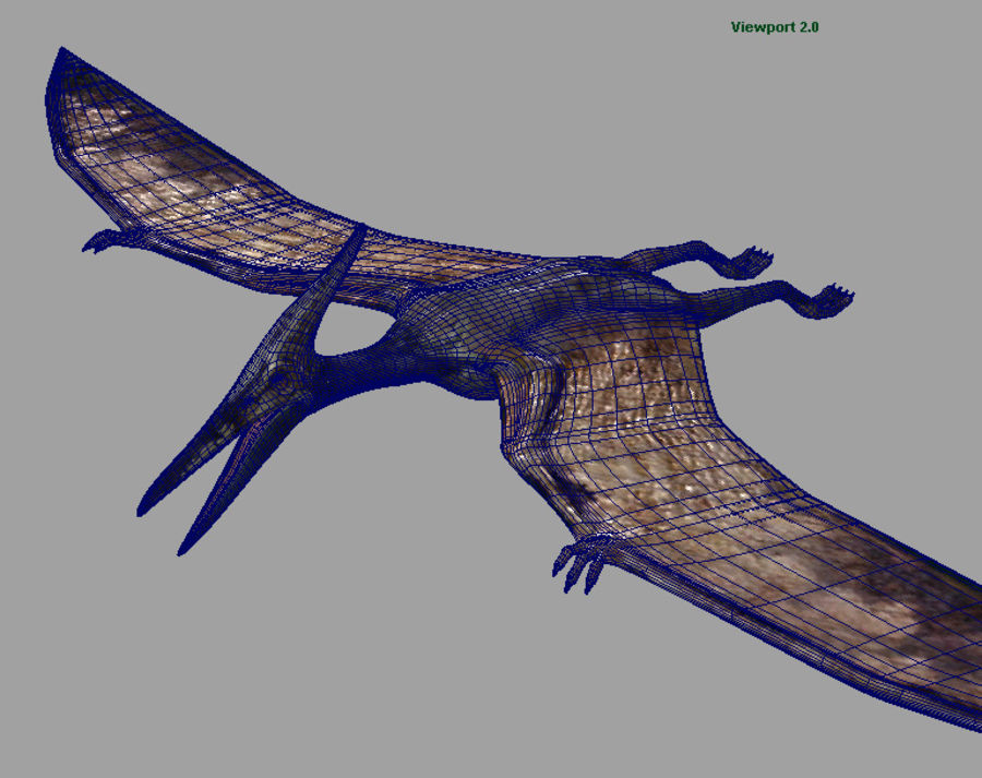 Jurassic Park - Pteranodon royalty-free 3d model - Preview no. 8