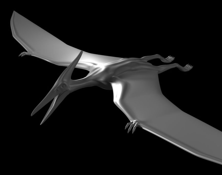 Jurassic Park - Pteranodon royalty-free 3d model - Preview no. 10