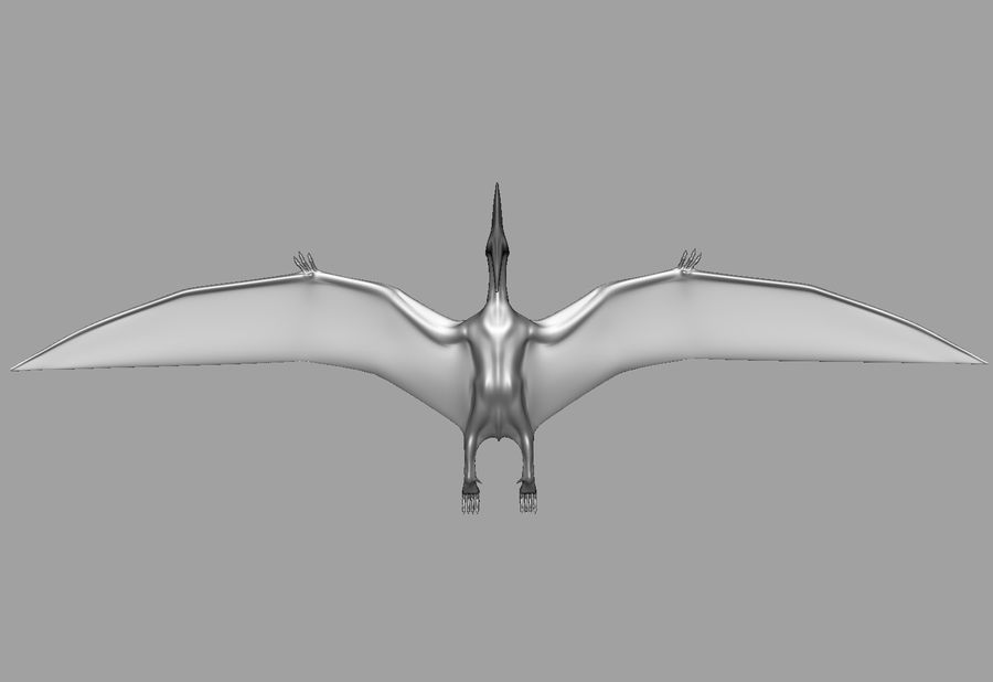 Jurassic Park - Pteranodon royalty-free 3d model - Preview no. 18