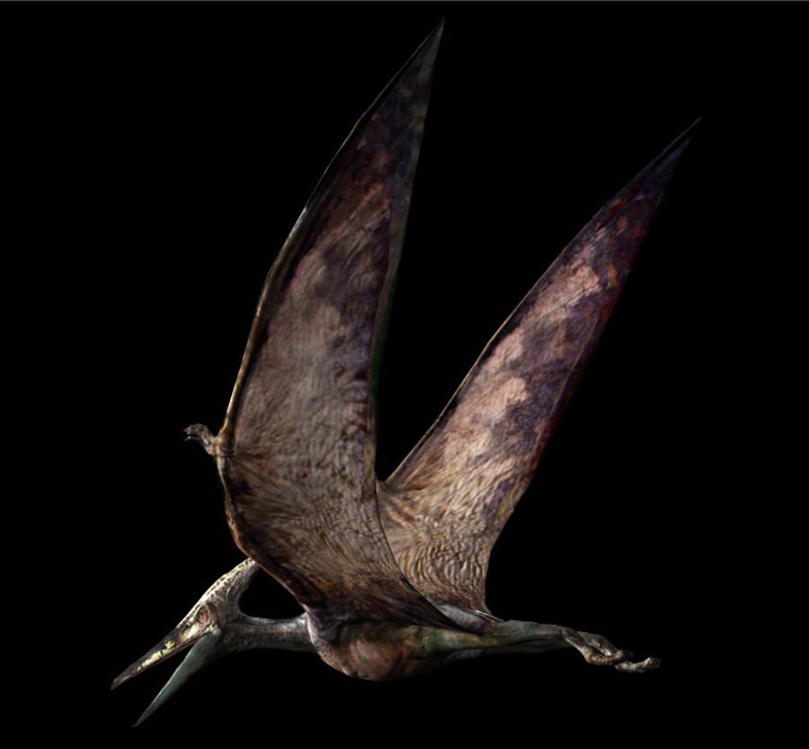 Jurassic Park - Pteranodon royalty-free 3d model - Preview no. 4