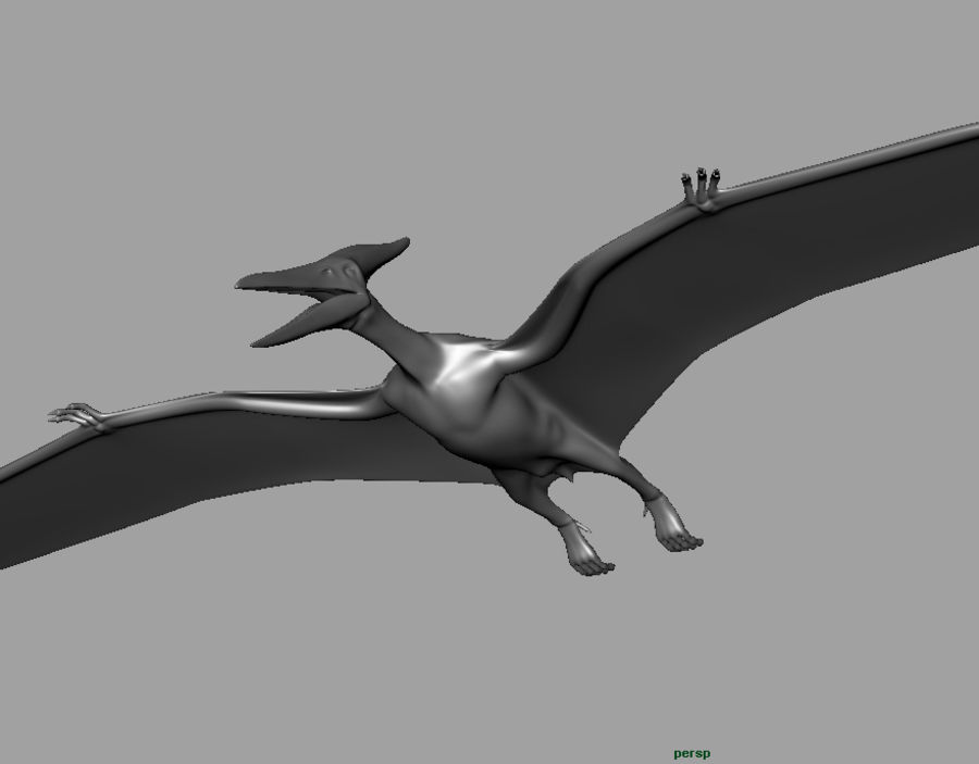 Jurassic Park - Pteranodon royalty-free 3d model - Preview no. 17