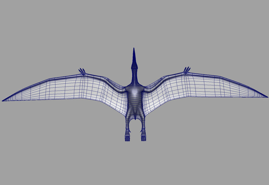 Jurassic Park - Pteranodon royalty-free 3d model - Preview no. 22