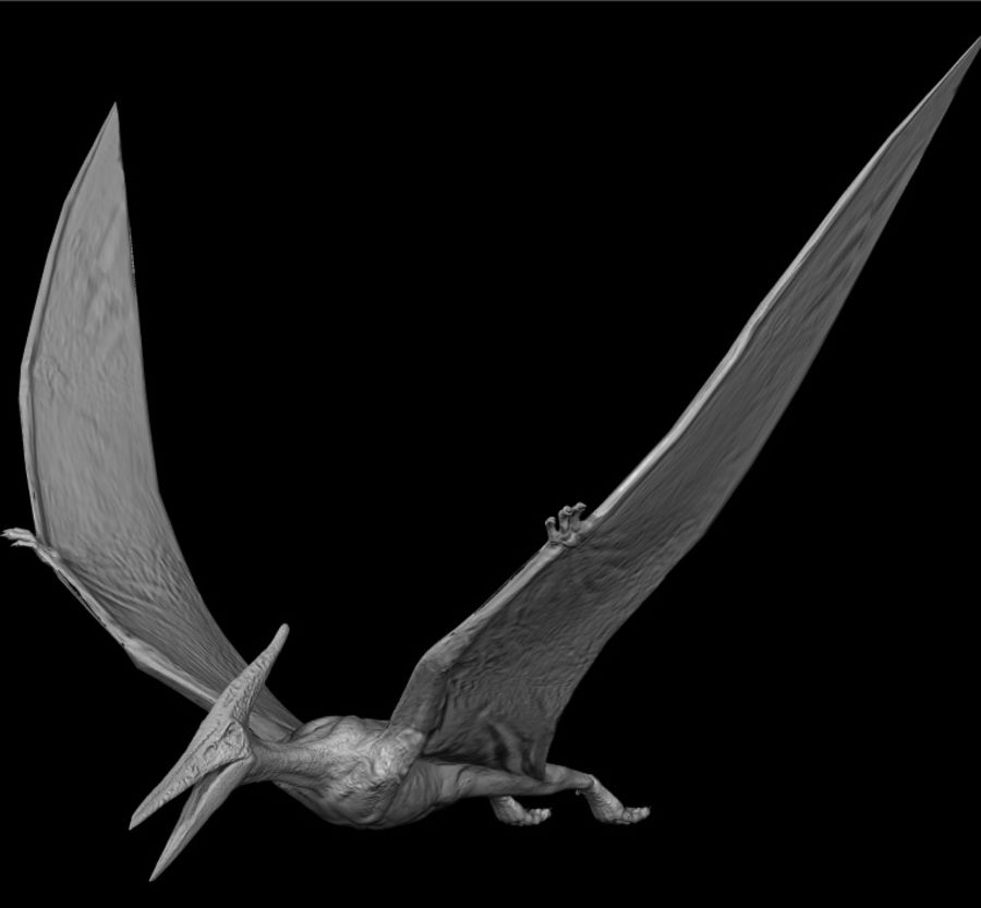 Jurassic Park - Pteranodon royalty-free 3d model - Preview no. 5