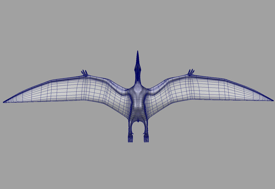 Jurassic Park - Pteranodon royalty-free 3d model - Preview no. 19