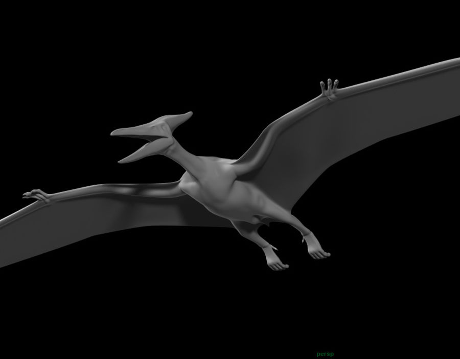 Jurassic Park - Pteranodon royalty-free 3d model - Preview no. 14
