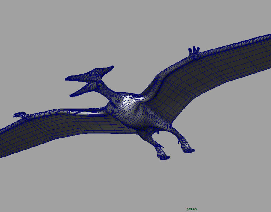 Jurassic Park - Pteranodon royalty-free 3d model - Preview no. 16