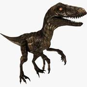 Velociraptor (DÜZ) 3d model
