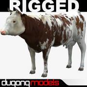 Krowa 01 3d model