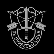 US Special Forces Insignia 3d model