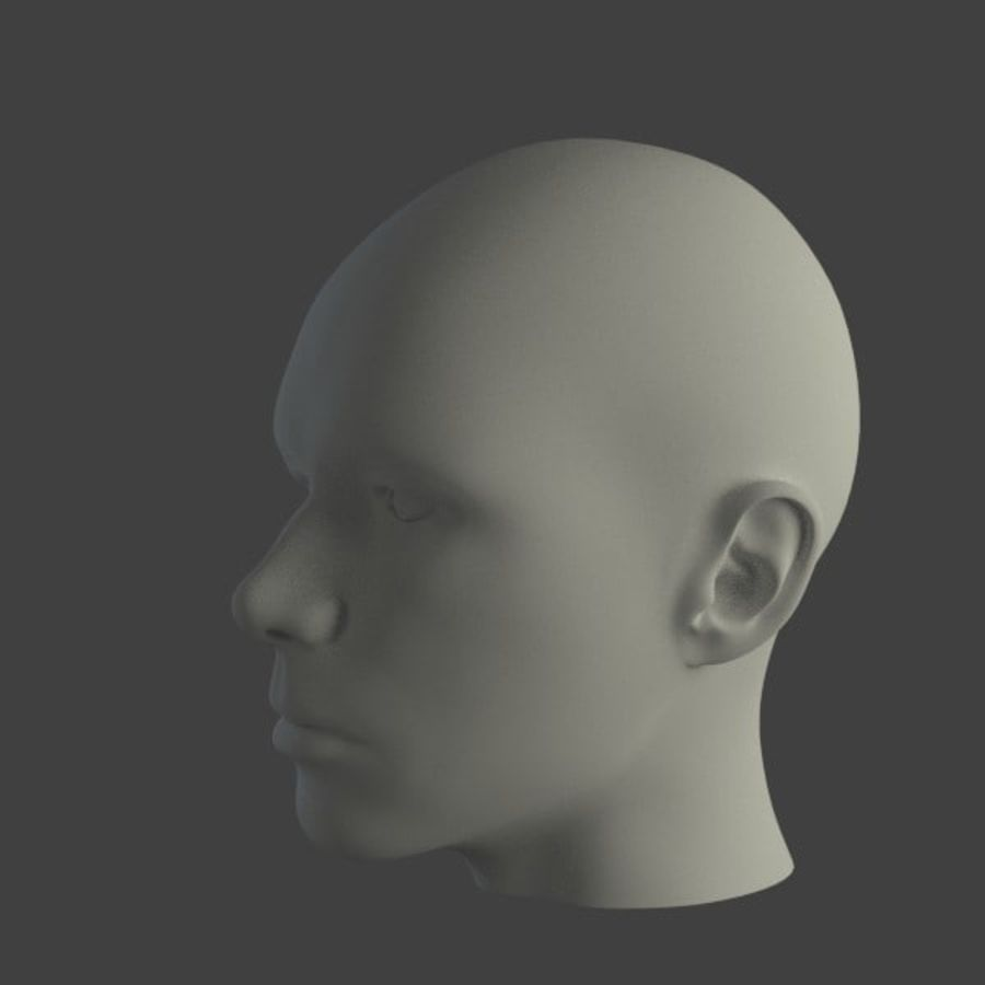 人間の男性の頭 royalty-free 3d model - Preview no. 4