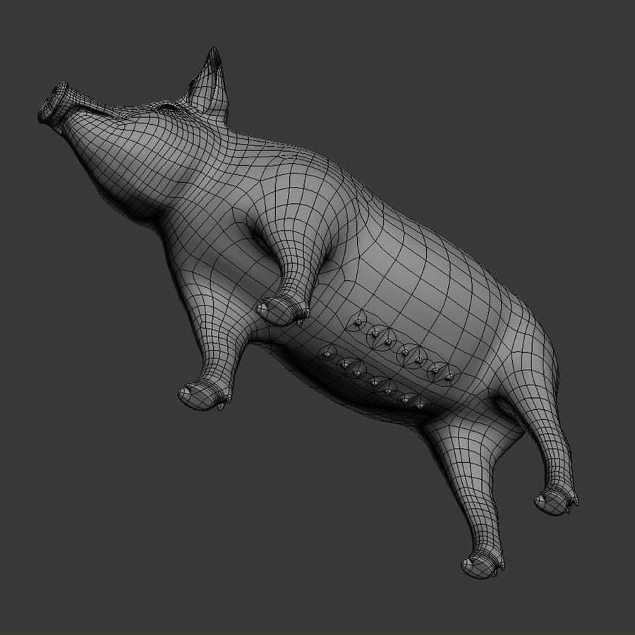 Pig royalty-free 3d model - Preview no. 15