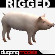 Świnia 3d model