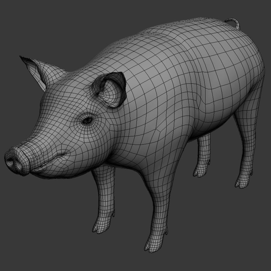 Pig royalty-free 3d model - Preview no. 13