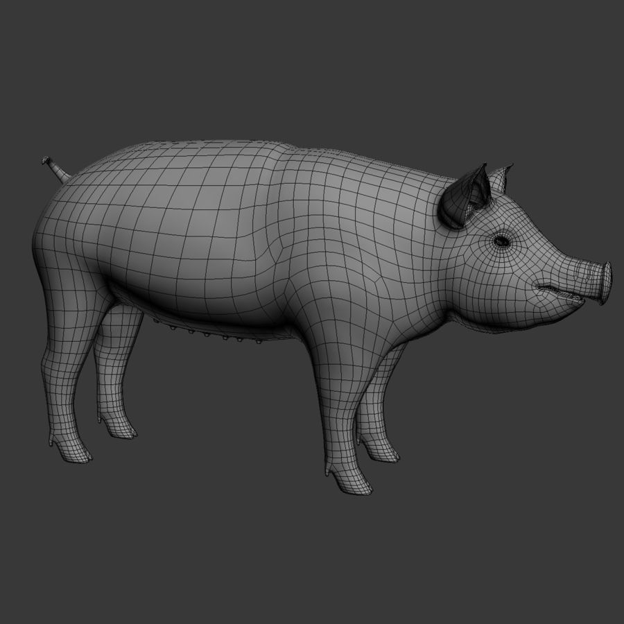 Pig royalty-free 3d model - Preview no. 12
